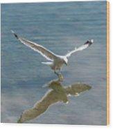 Landing Wood Print