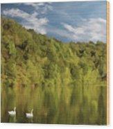 Landingville Lake Pennsylvania Wood Print