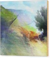 Landscape 02-05-10 Wood Print