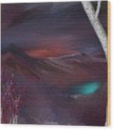 Landscape 030711 Wood Print
