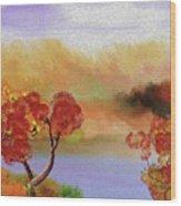 Landscape 031111 Wood Print