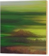 Landscape 081710 Wood Print