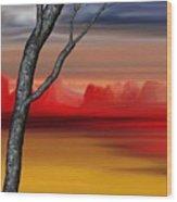Landscape 090210 Wood Print