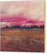 Landscape 1 Riga Wood Print