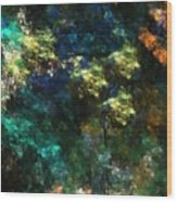 Landscape 10-10-09 Wood Print