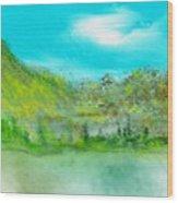 Landscape 101510 Wood Print