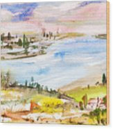 Landscape 3 Wood Print