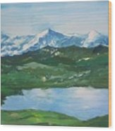Landscape 36 Wood Print