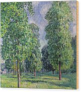 Landscape At Sevres Wood Print by Alfred Sisley