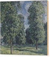 Landscape At Sevres Wood Print