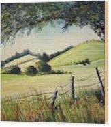 Landscape Bn Wood Print