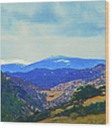Landscape From Virginia Dale Wood Print