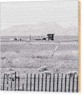 Landscape Galisteo Nm H10r Wood Print