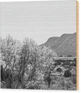Landscape Galisteo Nm J10o Wood Print