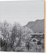 Landscape Galisteo Nm J10p Wood Print