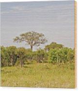 Landscape In Botswana Wood Print