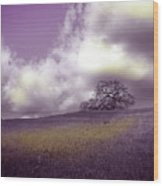 Landscape In Purple And Gold Wood Print