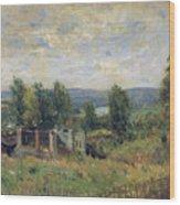 Landscape In Summer Wood Print