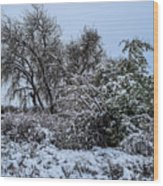 Landscape In The Snow Wood Print