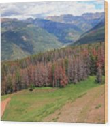 Landscape In Vail Wood Print
