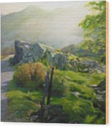 Landscape In Wales Wood Print
