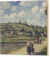 Landscape Near Pontoise Wood Print