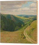 Landscape Near Schleiden In The Eifel Wood Print