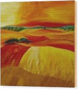 Landscape Of Alentejo Wood Print