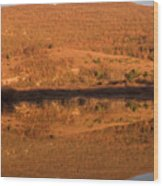 Landscape Perfectly Reflected In Palsko Lake Wood Print