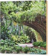 Landscape Rip Van Winkle Gardens Louisiana  Wood Print