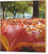 Landscape Trees Park Art Prints Autumn Fall Leaves Baslee Troutman Wood Print