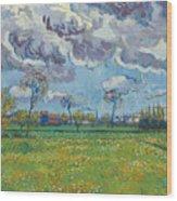 Landscape Under A Turbulent Sky Wood Print