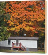 Landscape View Of Mobile Home 1 Wood Print