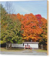 Landscape View Of Mobile Home 2 Wood Print