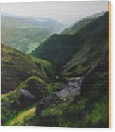 Landscape With Aspect Towards The North Wales Coast. Wood Print by Harry Robertson