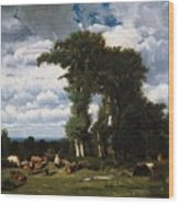 Landscape With Cattle At Limousin Wood Print