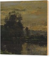 Landscape With Ducks Wood Print