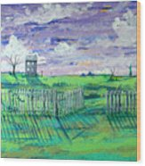 Landscape With Fence Wood Print