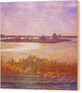 Landscape With Island 008 01 01 2016 Wood Print