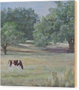 Landscape With Longhorn Wood Print