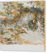 Landscape With Palmettos Wood Print