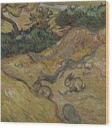 Landscape With Rabbits Saint Remy De Provence December 1889 Vincent Van Gogh 1853  1890 Wood Print