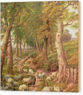Landscape With Sheep Wood Print