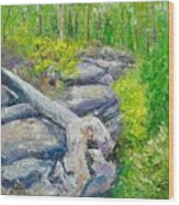 Lane Cove Burnt Stump Wood Print