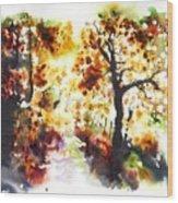 Lane Near Pont Cyfyng Wood Print