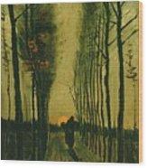 Lane Of Poplars At Sunset Wood Print