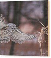 L'ange De La Mort Wood Print