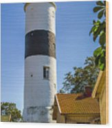 Lange Jan Lighthouse Wood Print