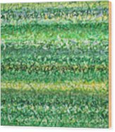 Language Of Grass Wood Print