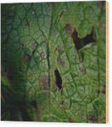 Languid Leaf Wood Print